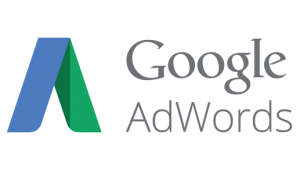 Google AdWords front cover billede